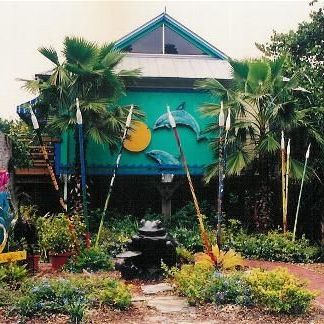 Jungle Drums Gallery